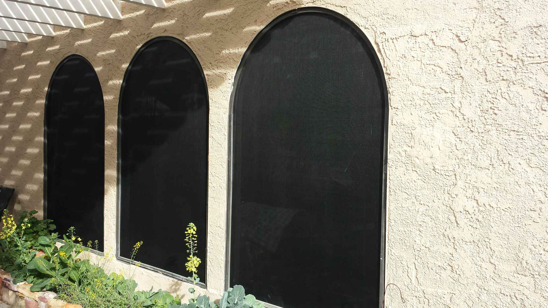 Oversized arched windows with 90% solar screens and bronze frames